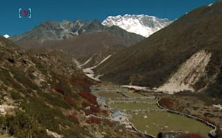 Hiker missing in Himalayas for 47 days found alive