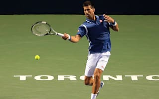 Djokovic beats Stepanek yet again