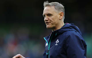 Schmidt preaches importance of continuity as Ireland unchanged for Wales
