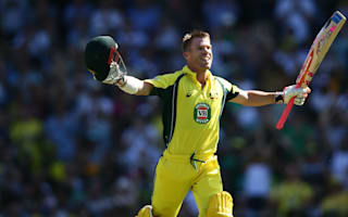 Warner bounces back with series-clinching century