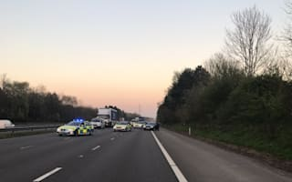 Woman killed chasing her dog on M4