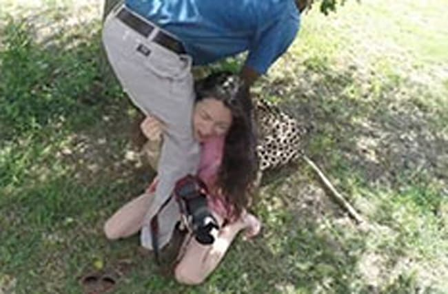 Horror after cheetah attacks tourist at South African lodge