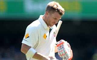 Warner put too much pressure on himself - Hick