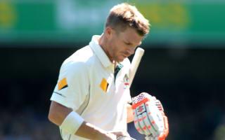 Warner put too much pressure on himself - Hick