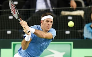Del Potro levels for Argentina with victory over Karlovic