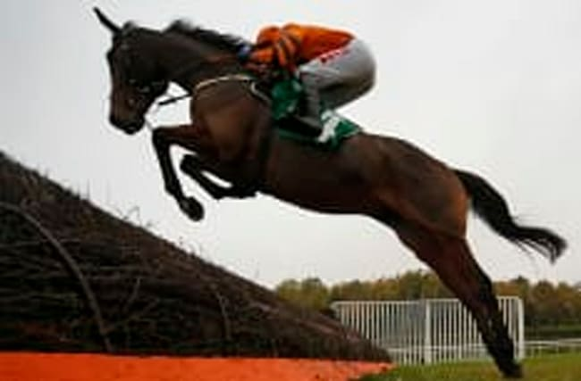 Which horse has been ruled out of Cheltenham Gold Cup?