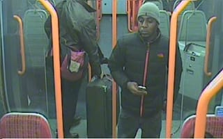 Police search for 'serial flasher' on London trains