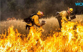 California firefighters contain most of state's biggest wildfire