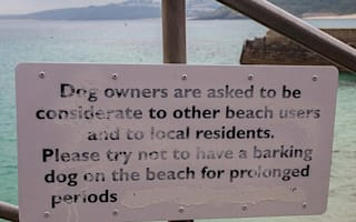 New beach sign tells pet owners to keep dogs quiet