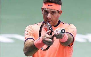 Del Potro reaches first final since 2014