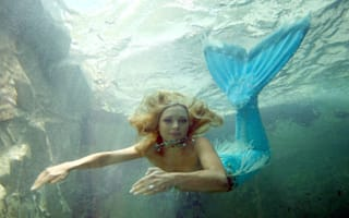 Mermaids don't exist, says US government body