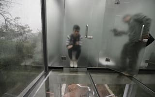 Tourist park in China opens toilet block made of GLASS