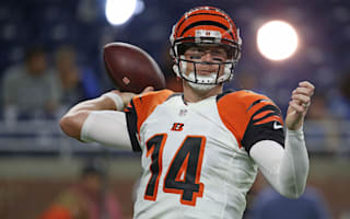NFL 2016: Bengals well-placed to end lengthy wait despite offseason losses