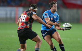 Serfontein blow for South Africa and Bulls