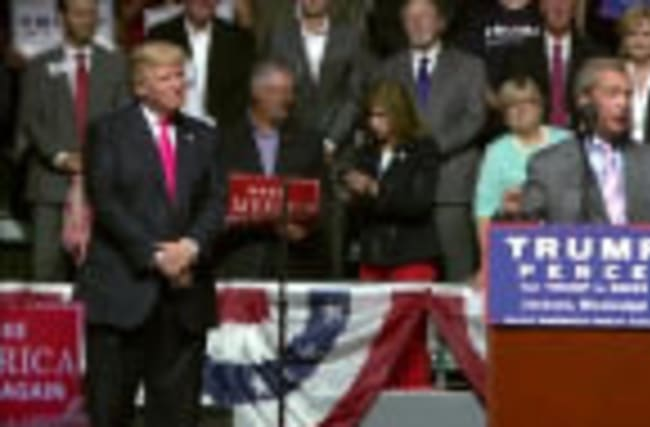 Brexit campaigner Farage backs Trump at rally