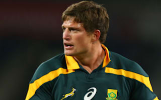 Springboks call up Van Zyl to replace Paige