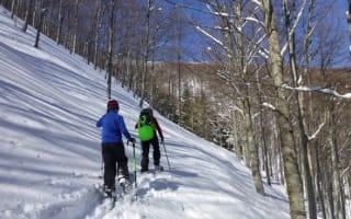Wonderful winter breaks without skiing