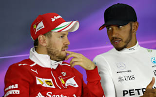 Vettel revels in Chinese Grand Prix despite Hamilton win
