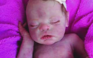 Police officer breaks window to 'save' realistic baby doll