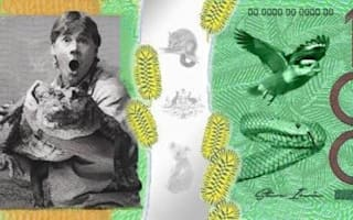 Call for Steve Irwin to appear on Australian currency