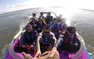 Tourists on jet boat rescues wallaby from drowning