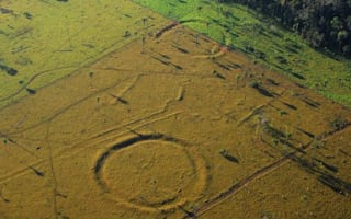 Incredible findings suggest human life in Amazon 2000 years ago