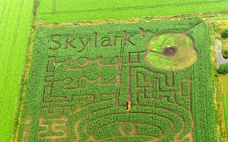 A-maze-ing Kitchener WW1 poster unveiled in Cambridgeshire field