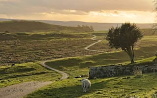 Win! A countryside escape for two near Hadrian's Wall