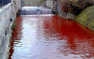 Gruesome mystery as river in Slovakian town turns red with blood