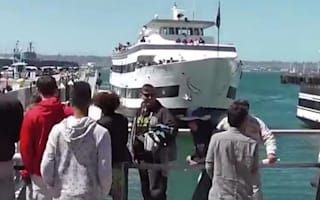 Tourist boat crashes through harbour wall (video)