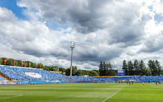 Darmstadt rename stadium in honour of fan who died from cancer
