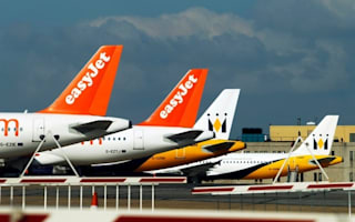 'Full emergency' declared as Easyjet plane hit by birds at Luton Airport