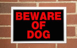 12-year dangerous dog battle lost