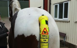 'Horse tail' cameras primed to target inconsiderate drivers