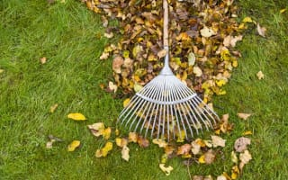 Councils threaten legal action for messy gardens or loud TV