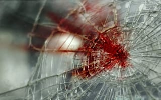 Passenger caused fatal crash after 'jokingly' grabbing steering wheel
