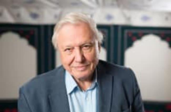 Sir David Attenborough set to return to narrate Blue Planet 2