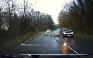 Two cars narrowly miss falling tree on busy road in Kent