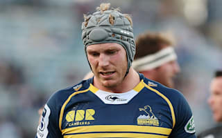 Brumbies eager to keep Pocock