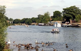 Man drowns trying to cross River Thames after missing last ferry home