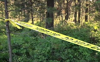 Grizzly bear kills mountain biker in Montana, USA