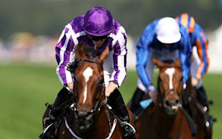 Brilliant Highland Reel toughs out Prince of Wales's win as Jack Hobbs flops
