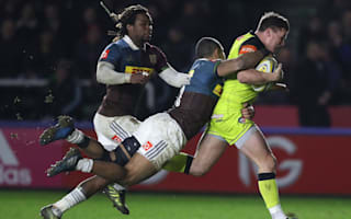 Tigers resurgence continues at The Stoop