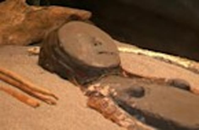 Chile seeks help to protect mummies