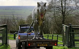 Dozens of dinosaurs delivered for animal park display