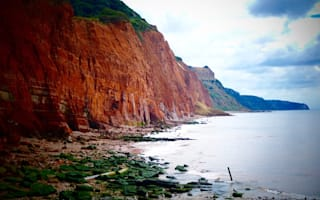 Can you see the sad face in this Sidmouth cliff?