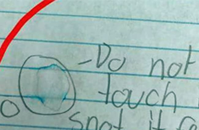 Polite boy writes warning to teacher on homework