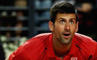 Djokovic makes light work of Lu