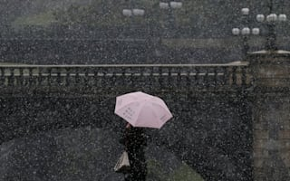 It's a white November in Tokyo for the first time in 54 years