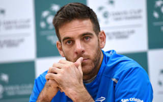 Del Potro hoping for winning 2016 finale